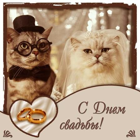 Поздравление с годовщиной свадьбы 32 года