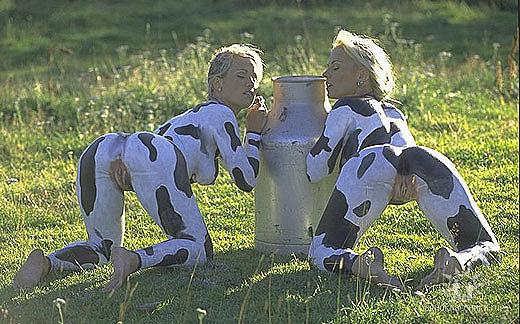 фото корова пизда