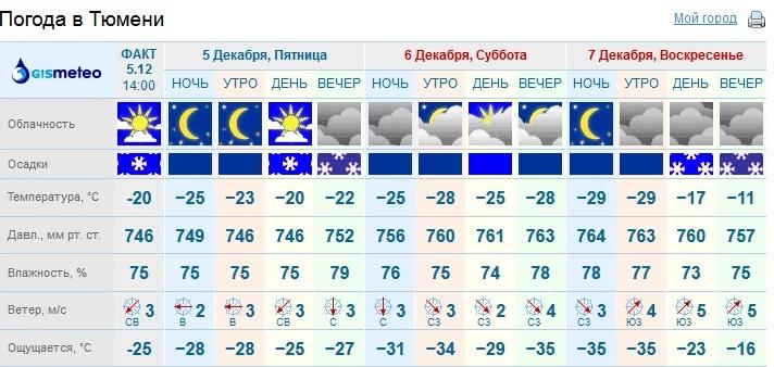 молодая погода в тюмени на месяца если обладательница