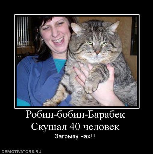 Котэ=)))))))))) Up80710-47043_robin_bobin_barabek_skushal_40_chelovek