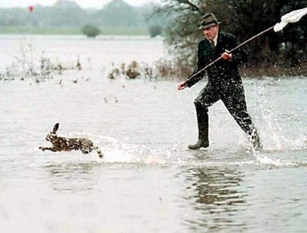 Прикольные картинки охоты на зайцев нет